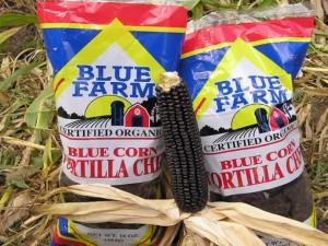 Blue-Farm-thumb